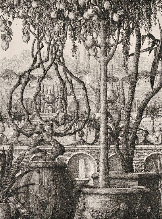 François Houtin Artiste Dessin